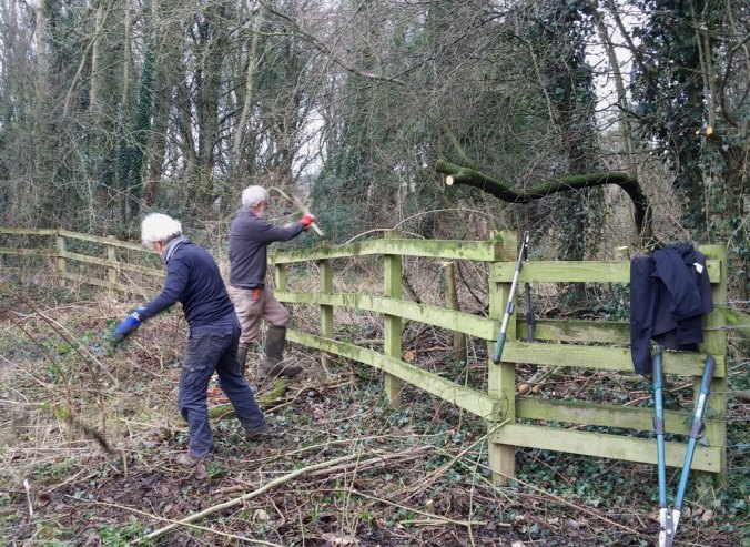 Fence line clearing - Clara Vale Nature Reserve