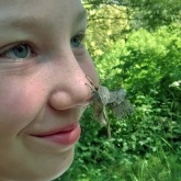 Guess the moth on Ella's nose!